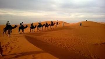 Information on Desert Ecosystem in India. Types, Examples of Desert Ecosystem, Download PDF, Essay, Paragraph, article on Desert Ecosystem