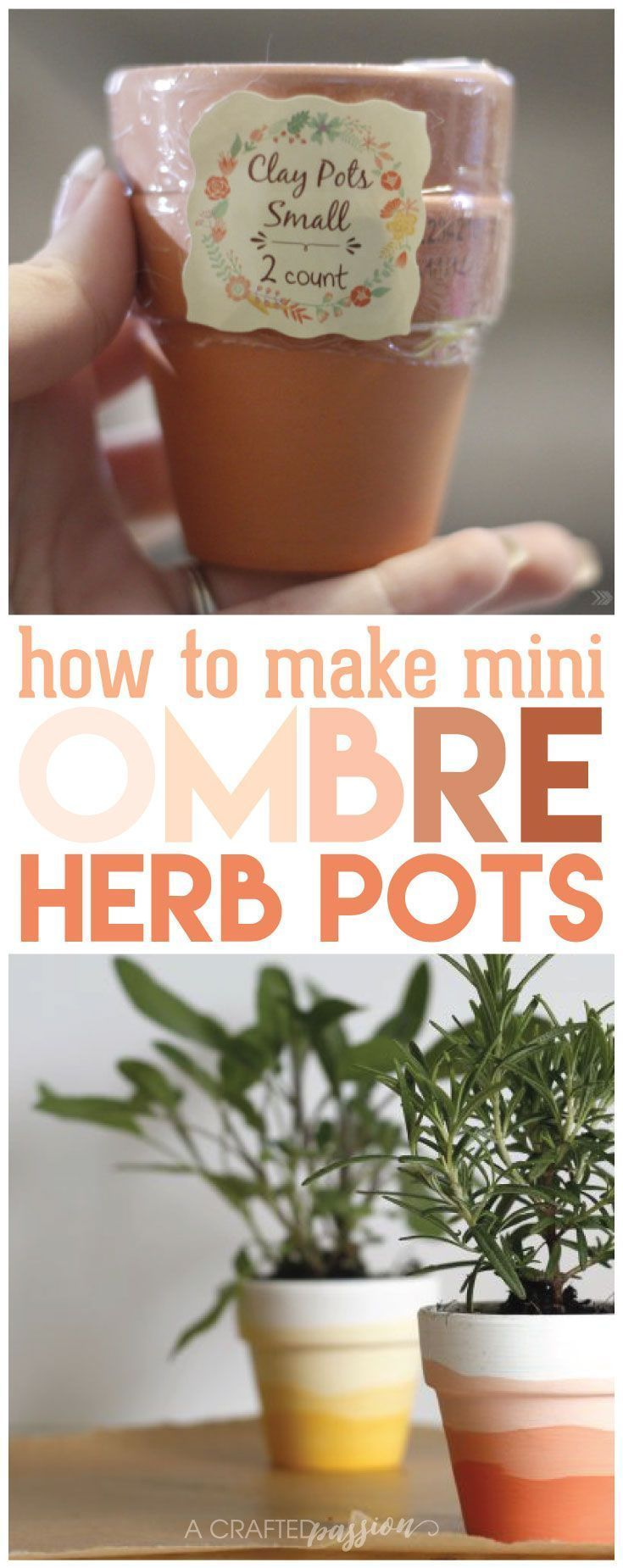 Make a set of these mini ombre herb pots for under $5! An easy DIY craft idea to do with the family.