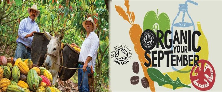 Have you bought any of our organic Cacoa or Cocoa powder for Soil Association's Organic September yet? http://www.foodthoughts.co.uk/organic-september-buy-organic-cacao-powder-organic-cocoa-powder/ #ChooseOrganic #OrganicSeptember