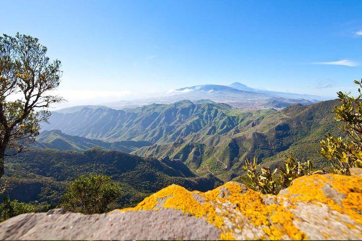 Este paisaje, que parece poco menos que sacado de una película de animación, es el que ofrecen las Montañas Anaga, una de las vistas más singulares de Tenerife. Cumbres verdísimas se sumergen en el mar de mil turquesas, como si la costa que suele haber entre ambos se la hubiese llevado el océano a la deriva cuando la ínsula se despegó de aquel continente único que formó el mundo en algún momento de su nacimiento. Porque Tenerife, todo turistas en bañador, guarda en esta región sin…