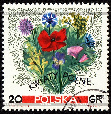 Bouquet of wildflowers on postage stamp | High resolution stock illustration | ID 3181190