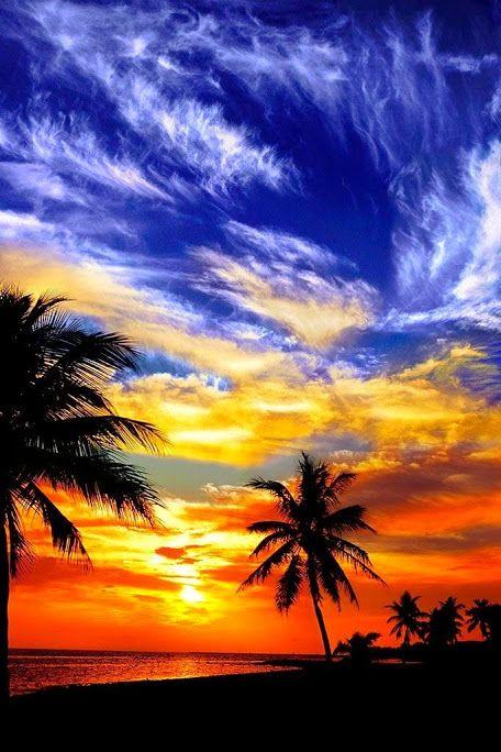 Пальмы силуэты на закате #beautifulpictures  #beauty #be2autiful #nature