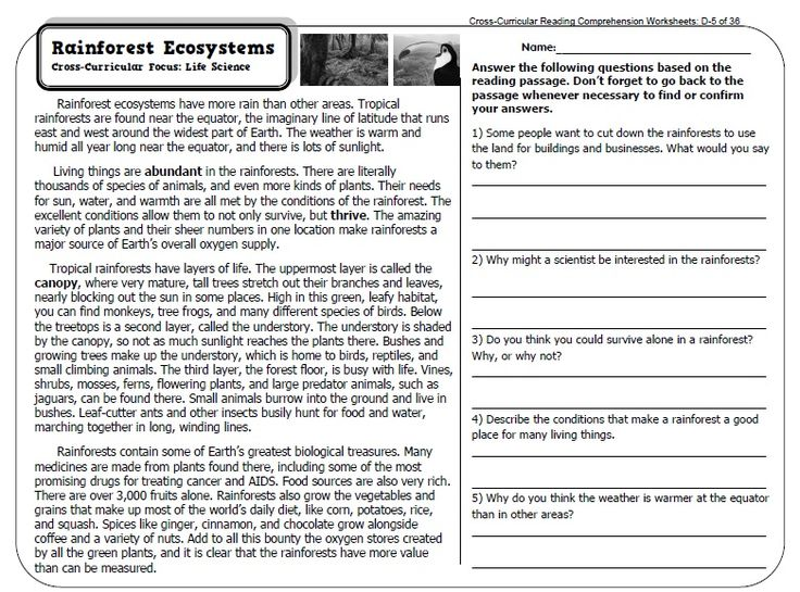 Rd Grade Informational Writing Examples on practice pages, prompt about maps, printouts for, common core, lesson plans, conclusion for essay, art prompt,
