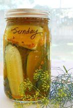 Lacto Fermented Garlic Dill Pickles | The Herban Farmer