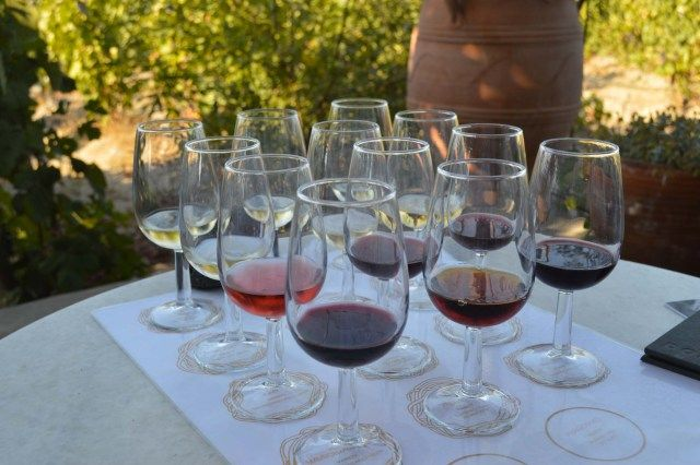 Wine tasting - vineyards, Santorini