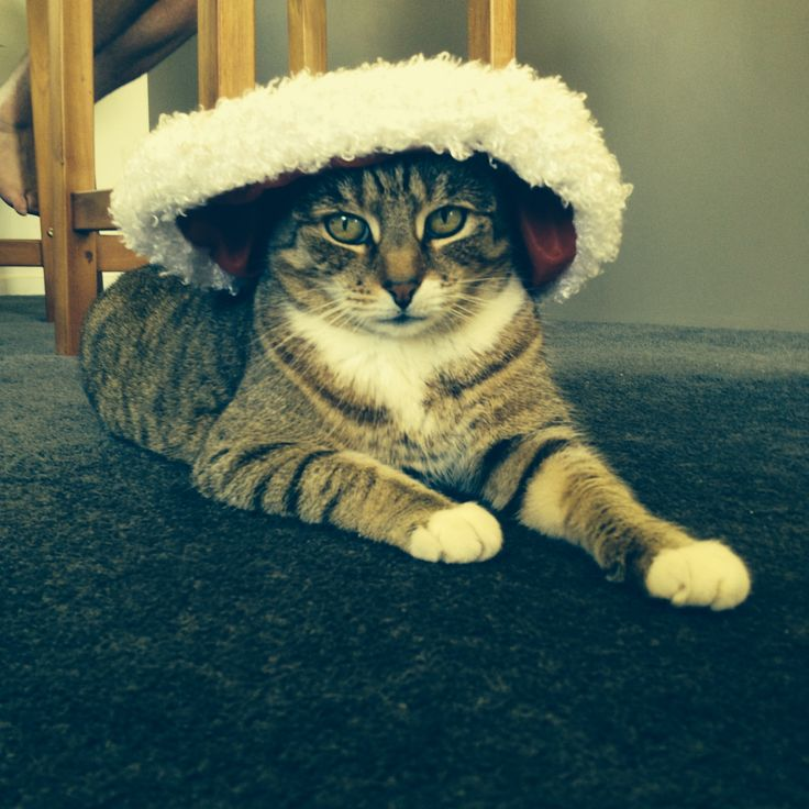 Mittens with Santa hat lol