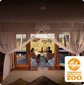 Taronga Zoofari - Dubbo