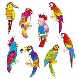 Decoratie tropische vogels 8 stuks -  Een set met acht decoraties van van tropische vogels.
