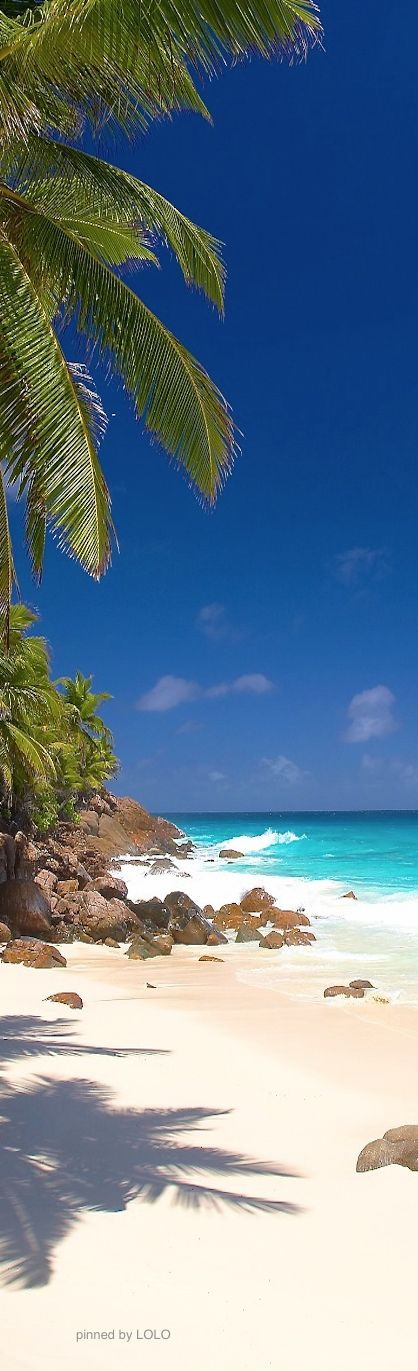 St. Kitts, West Indies.....  Went there in 91... it is GORGEOUS!!!  :D  Want to go back!