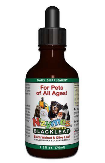 Tincture of BlackLeaf - Black Walnut and Olive Leaf Blend   NZMES.COM - NZYMES.COM - a Division of Biopet Inc.