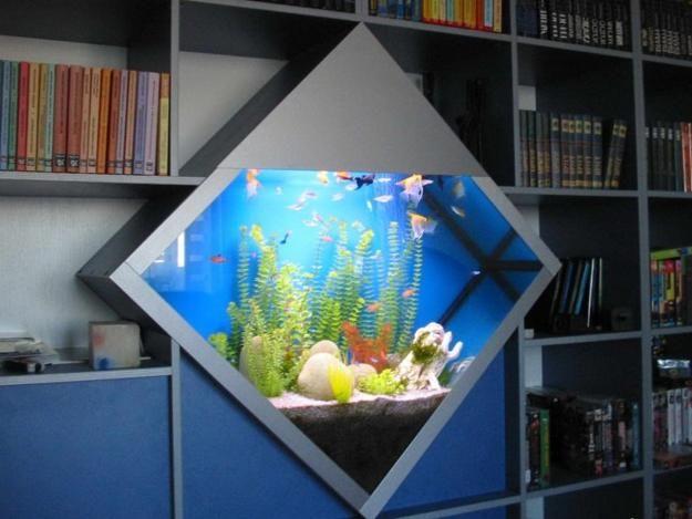 1000 images about aquarium on pinterest betta tank home aquarium and saltwater aquarium. Black Bedroom Furniture Sets. Home Design Ideas