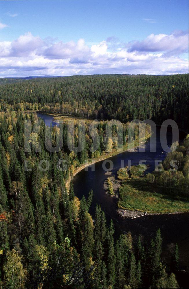 #bosques de Kuusamo, Finlandia.