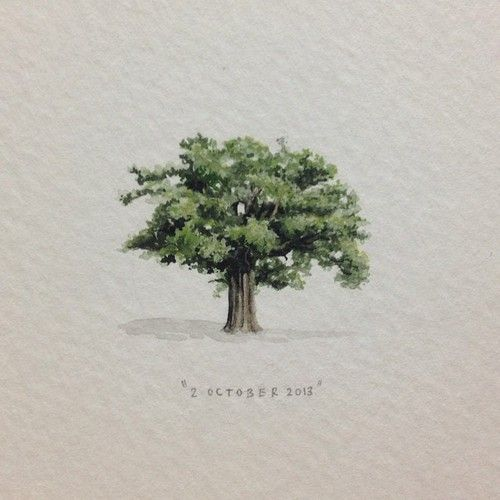 Day 274 : A big old oak tree for the lovely and very talented Callen Jefferson…