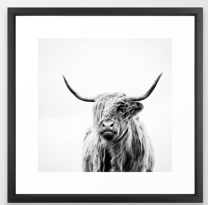 https://society6.com/product/portrait-of-a-highland-cow_framed-print#s6-2099401p21a12v60a13v58
