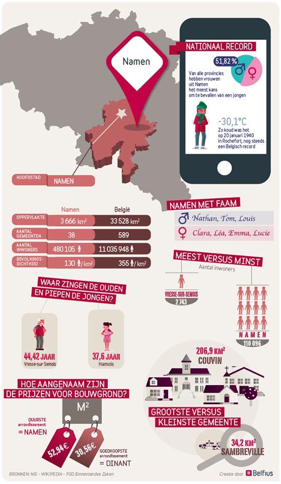 De grootste kans op een jongen bij de geboorte, de koudste dag ooit in België … : Namen is op meerdere vlakken een topper. Bekijk de infographic voor meer facts & figures over de provincie Namen!