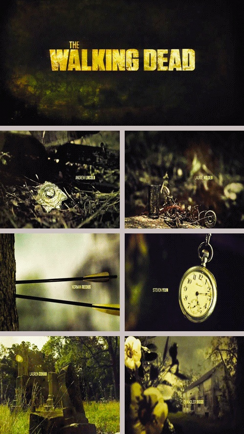 The Walking Dead http://pinterest.com/yankeelisa/the-walking-dead/