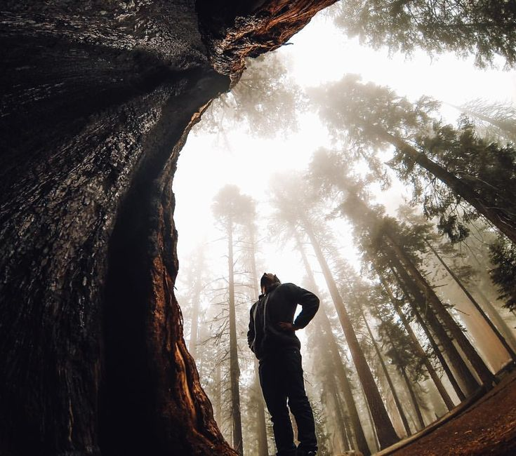 Best GoPro Images On Pinterest Gopro Amazing Photos And Angles - 33 incredible photos taken gopro