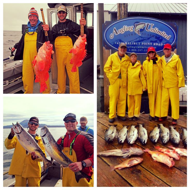 Sitka fishing report 6/17: Brantigan and Boyd Parties | What an incredible stretch of weather the last few days! These groups took advantage of great fishing and beautiful weather to maximize everything Sitka has to offer. Read about their trips in our latest fishing report.