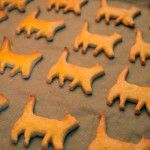 Easy-to-Make Organic Cat Treats  1/2 C whole wheat Flour  1/2 C non-fat, powdered milk  1/2 C a meat - tuna, chicken  1Tbsp veg oil  1egg beaten  1/4 C water  optional 1tbsp chopped catnip  combine wet, dry, then together  cook 10mins one side then turn at 350 F.