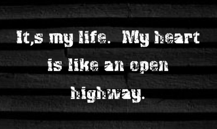 Bon Jovi - It's My Life - song lyrics, song quotes, songs, music lyrics, music quotes, lovethispic