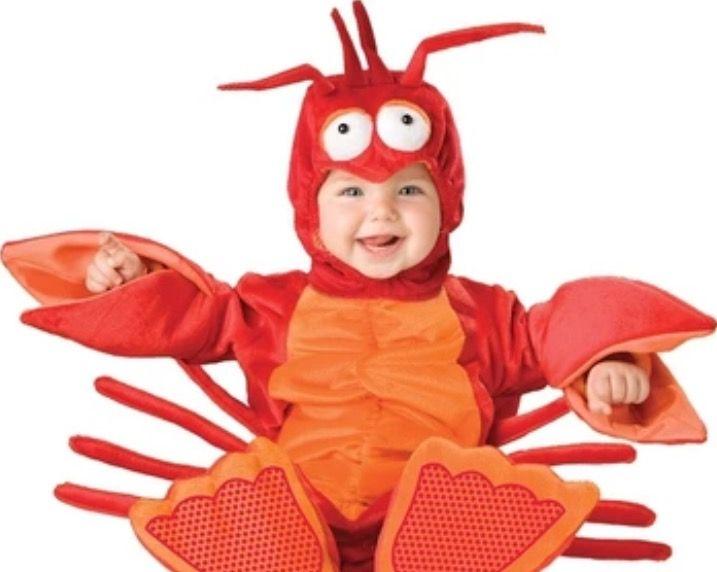 Baby kostuum Kreeft
