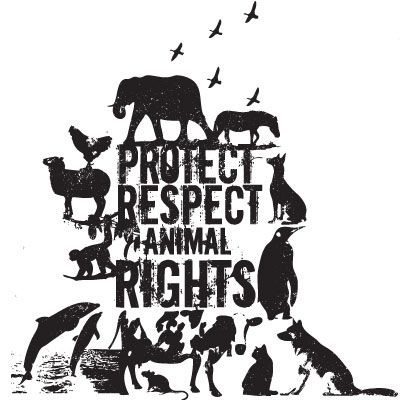 animal rights turning the tables Npr shop turning the tables turning the tables more from turning the tables load more stories.