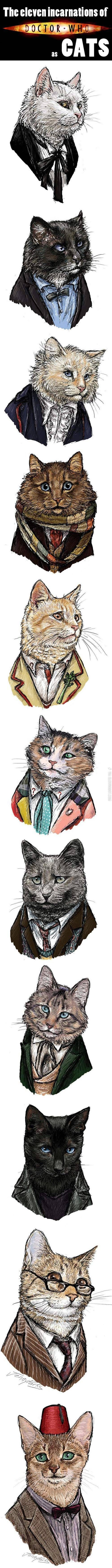 The eleven incarnations of Doctor Who as cats.