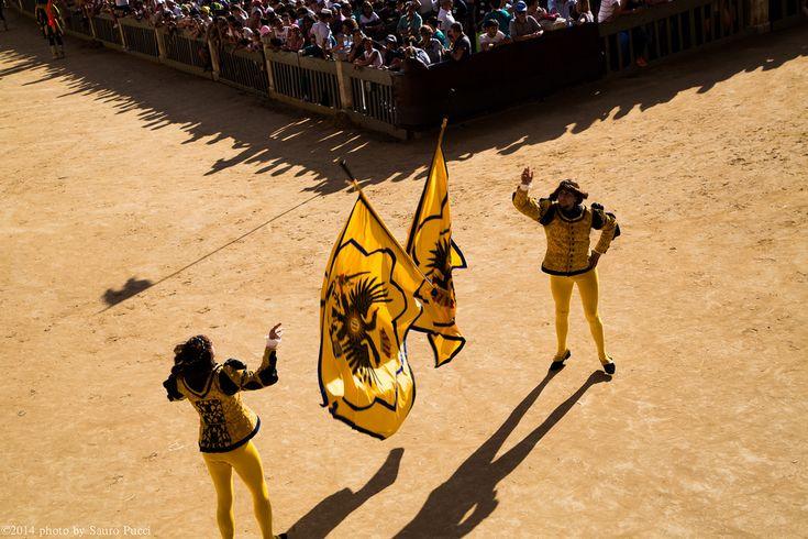 Alfieri della Contrada dell'Aquila (2 luglio 2014) - Foto di Sauro Pucci su Flickr - https://www.flickr.com/photos/122246262@N02/15948831946/ - #Siena #Toscana #PalioDiSiena