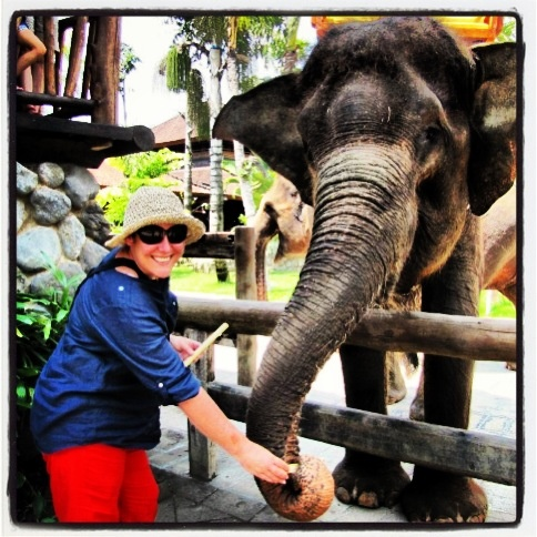 Bali Zoo with my ride