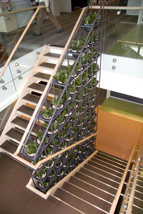 Change the look of your stairwell by turning it into a green wall. See more at www.greendesign.com.au