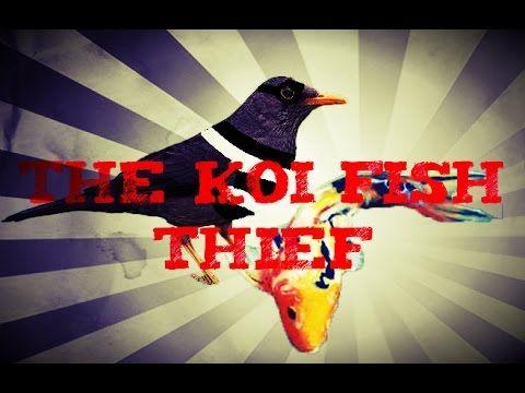 The Koi Fish Thief