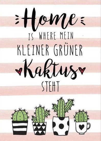 home is where mein kleiner grüner kaktus steht