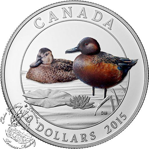 Coin Gallery London Store - Canada: 2015 $10 Cinnamon Teal Silver Coin, $69.95