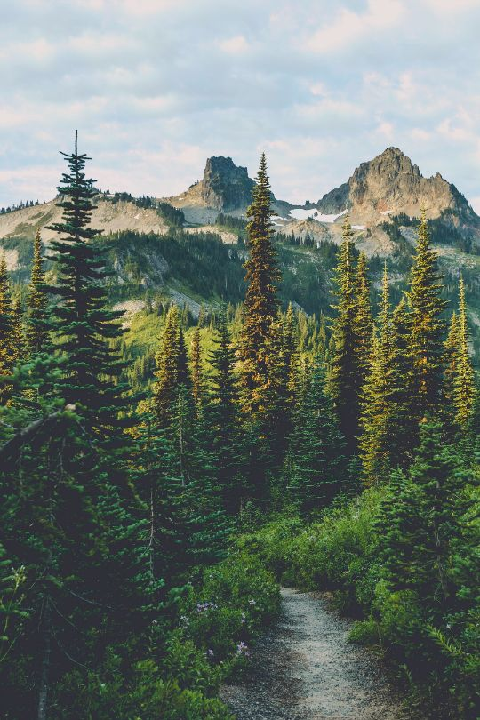 Wander to the mountains