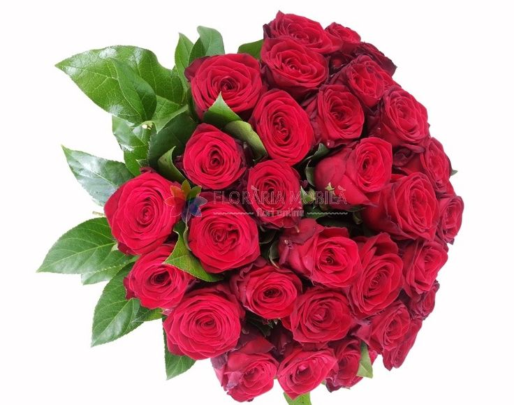 buchete din 37 trandafiri rosii 37 red roses bouquet - Luxury Collection