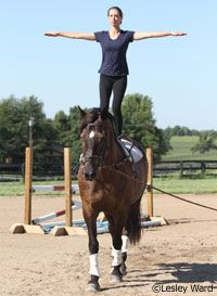34 Best Equestrian Vaulting Images On Pinterest