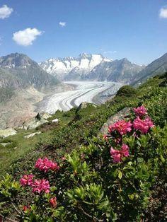 Glaciar Aletsch or Aletschgletscher, Switzerland.