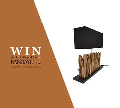 Win a unique Aceh Driftwood Lamp, worth £179 http://virl.io/qMCXdzat
