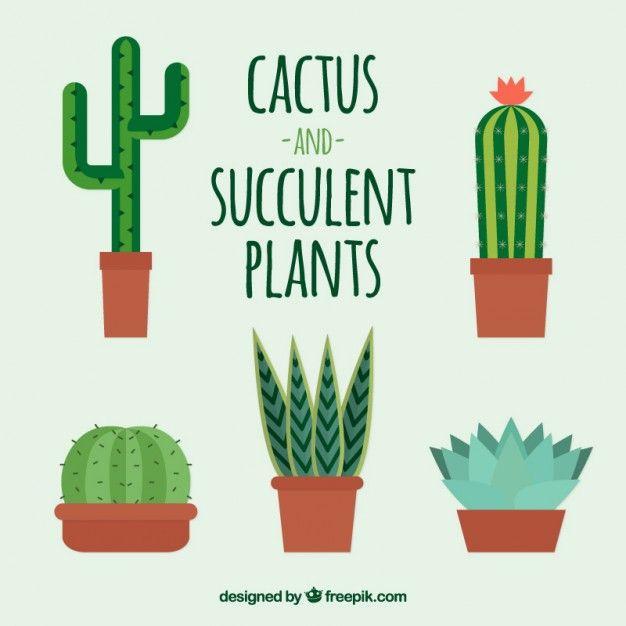 set-of-cute-cactus-in-flat-design_23-2147547520.jpg (626×626)