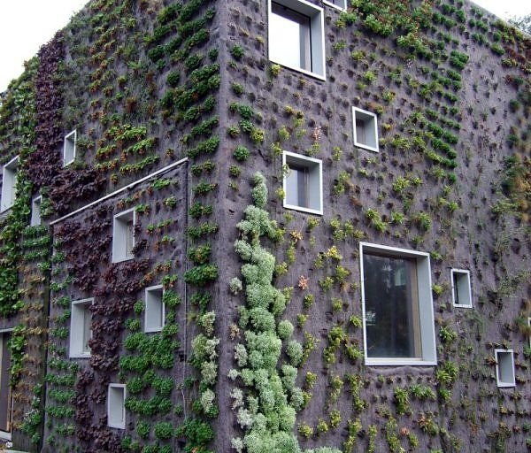 Green building, literally.