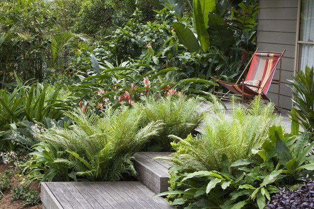 7 besten Plants Bilder auf Pinterest Gardening, Gärten und Indoor - vorgartengestaltung mit rindenmulch und kies