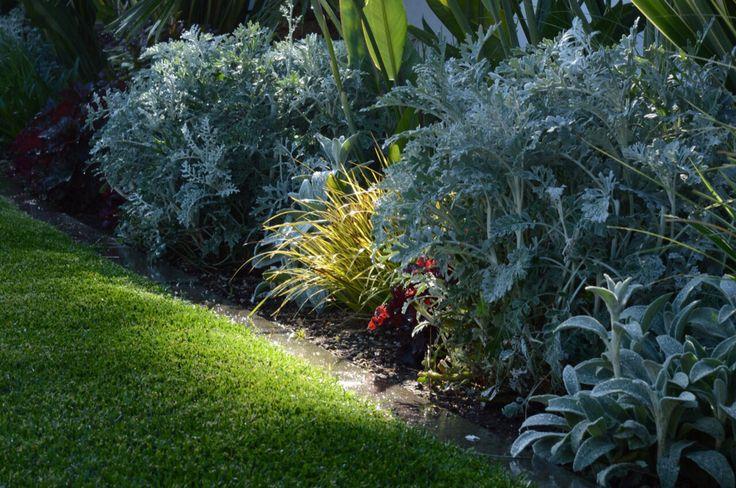 Home sweet home  #garden #giardino #verde