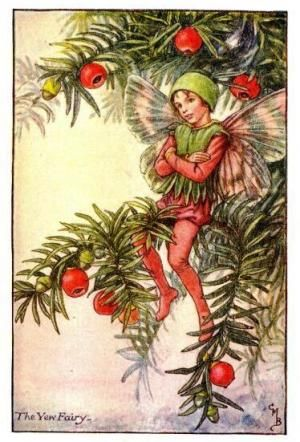 Autumn Fairies: The Yew Fairy By Cicely Mary Barker