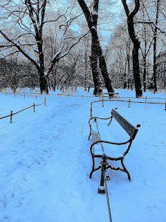 WWW  Wiersze Wycieczki Wspomnienia: Haiku o zimie: Poszarzały śnieg, Pełnia