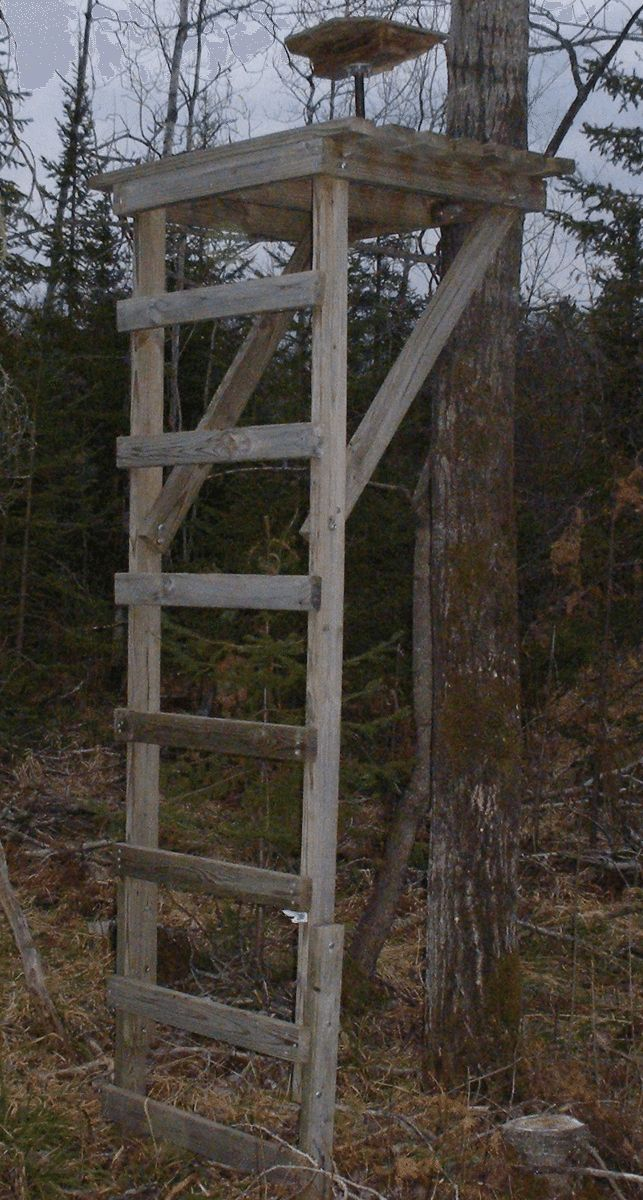 Picture of a deer stand with a swivel chair