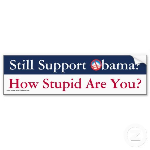 Still support obama how stupid are you bumper sticker