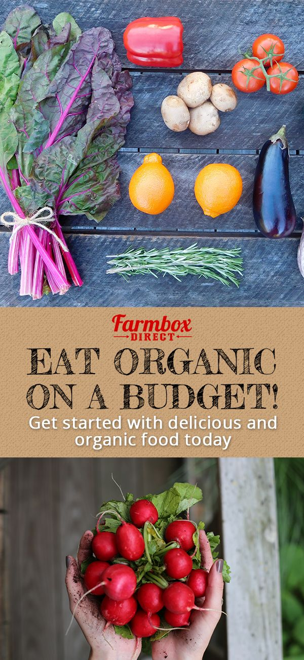 If you hate going to the grocery store and craving healthy and organic fruit and produce, FarmBox Direct is the service for you! Sign up today for 100% organic, fresh produce directly to your doorstep � for free. Customize your order depending on what you want that month with zero commitments. Sign up for this affordable and delicious box today!