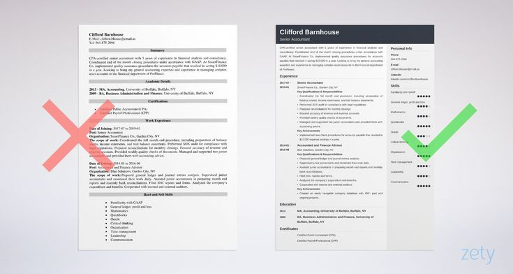 Senior Accountant Resume Sample Amp Writing Guide 20 Tips Expect To Receive Fun Light Hearted Sh Teacher Resume Examples Resume Examples Teacher Resume