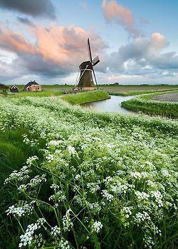 niceoutdoors: Eemshaven, Netherlands