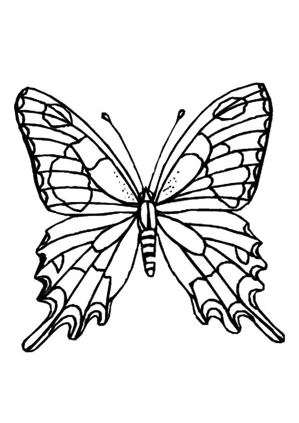 Butterfly Coloring Pages Momjunction Designs Collections